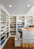 Высокое качество современным кухонным шкафом для лака (W-162)