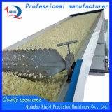 Máquinas para processamento de produtos hortícolas Secador de ar quente