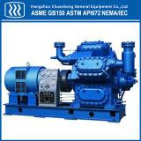Compressor de gás industrial Compressor de ar de pistão
