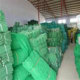 Opleveren van de Veiligheid van de Steiger van Suppy van de fabriek het Plastic
