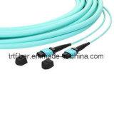 10g MPO-MPO Patch de cordon de fibre de ruban