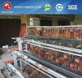 Руководство или автоматическая подавая конструкция Breeding курицы клеток птицы кладя (4L120)