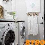 現代流行の高い光沢のある終わりの洗濯のキャビネット(によってL 19