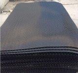 stuoia di gomma antirumore del pavimento di 50X50cm per la strumentazione di ginnastica