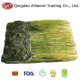 Qualitäts-guter Preis gefrorener gehackter Spinat