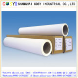 Papel del sintético de /Packing PP de la impresión de la alta calidad