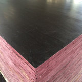 La película de la capa del color del negro de la chapa de la base del álamo hizo frente a la madera contrachapada (6X1250X2500m m)