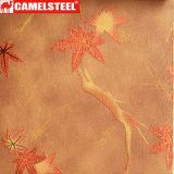 Die beschichtete Blumen-Muster-Farbe galvanisierte Stahlringe von China