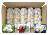 Aglio bianco del fornitore dell'aglio dei 2017 cinesi nuovo