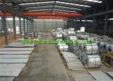 Un certificat de test d'usine Ss Tôles en acier inoxydable/bobine par prix d'usine