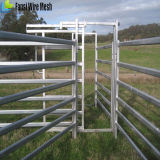 Guida ovale del comitato 6 portatili dell'iarda - comitati del cavallo delle iarde del bestiame