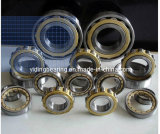 Nu2207ecp NSK SKF Roulement à rouleaux cylindriques Nu2207em NSK Bearing