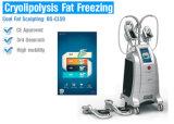 Cls9 fat traitement de congélation Perte de poids corporel la liposuccion la machine