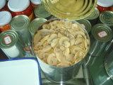 نكهة جيّدة من يستطاع فطر بروز طازج