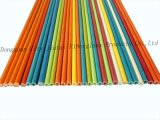 Personalizou todos os tipos da fibra de vidro Ros