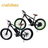26*4.0 1000Wセリウムが付いている大きい力のEbikeの脂肪質のタイヤの電気自転車