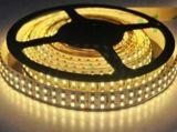 24 Volt Flexible LED Strip Lighting/Flexible LED Tape Strip 5050SMD