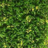 훈장을 정원사 노릇을 하는 본사 상점을%s 40X60cm 크기 녹색 벽 인공적인 정원