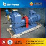Du ZW pompe à eau d'égout Non-Encrassante auto-amorçante extérieure horizontalement
