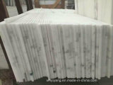 Interior Bookmatch를 위한 판다 White Marble Tiles