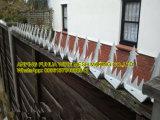 Предупреждение против подниматься предельно стены с остроконечными используется на деревянные ограждения