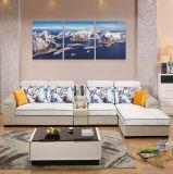 Meubles réglés de salle de séjour de sofa moderne de type