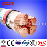 De lage N2xy Kabel van het Koper Voltage1kv Nyy met Ce- Certificaat