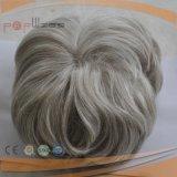회색 머리 아름다운 많은 국경 남자의 Toupee (PPG-l-01477)