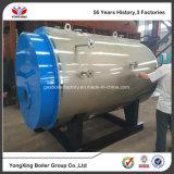 Fábrica que vende directo la caldera de vapor de gas de gasolina y aceite de la serie de Wns para la industria textil