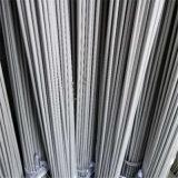 Intercambiador de calor SS304 316 tubos sin costuras señalan frío U