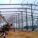 Estructura de acero ligera del diseño que construye el palmo ancho para la venta