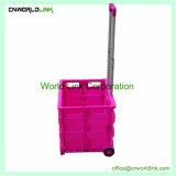 Sale를 위한 2개의 바퀴 Plastic Folding Cart Supermarket 또는 Shopping Trolley