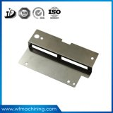Metal personalizado/placa de identificação magnética plástica com gravura do laser