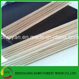 構築のための黒いフィルムの表面合板か構築または木建築材のための合板