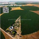 농업 농장 센터 선회축 관개 시설