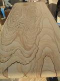 磨かれた黄色い砂岩平板の磨かれた砂岩平板