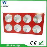 COB 600W LED Grow Light para vegetais de tomate e alface