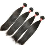 Weave reto malaio do cabelo humano das extensões 100% do cabelo do Virgin