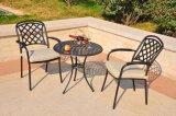 Pátio conservador do jardim ao ar livre do metal que janta a mobília