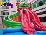 Pool Gragon Parque Aquático inflável para diversão