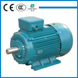 Гарантия качества справедливых цен на Y2 белка серии индукционный электродвигатель отсека для жестких дисков