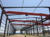 Gruppo di lavoro di costruzione della struttura d'acciaio per l'acciaieria
