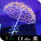 LEIDENE Motify steekt 3D Paraplu aan