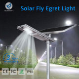 Newest Fly Egret Series 15W-100W All in Solar One Street Light with Remote Control