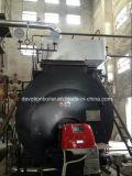 Eficacia alta y de baja emisión industrial caldera de condensación de vapor