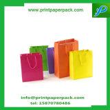 Sac à provisions de luxe de traiter de surface d'impression offset et de papier de marque de caractéristique recyclable