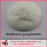 Порошок ацетата Boldenone ацетата CAS 2363-59-9 сырья USP смелейший