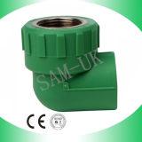 Gomito femminile d'ottone dell'accessorio per tubi PPR con ottone