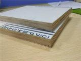 Couleur blanche de panneaux sandwich de contreplaqué en aluminium pour les portes du chariot