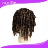 Tresse de cheveux bouclés perruque de cheveux synthétiques